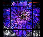 Chrysanthemum Window