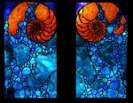 Nautilus Window