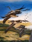 Pelicans over thelagoon