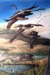 final brown pelicandetail