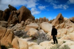 in the Wonderland of Rocks, Joshua Tree National Park, CA