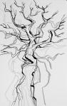 treeforms