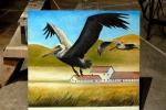 pelican study (panel)