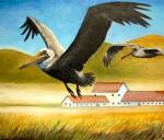early pelican study (onpanel)
