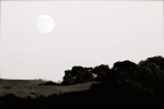 moon over landscape