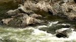 Volcanic Creek rocks (Mercedriver)